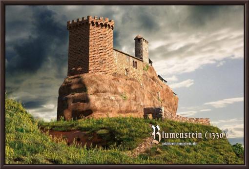 Burg Blumenstein Feldseite aus SW